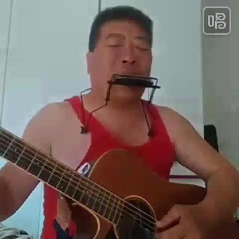 口琴,吉他.月亮代表我的心.-力哥